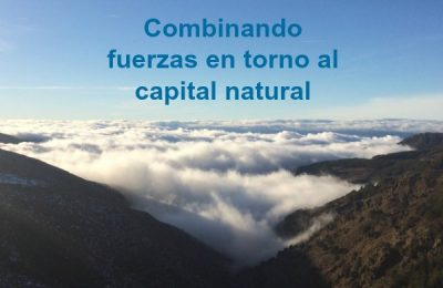 Combinando fuerzas en torno al capital natural
