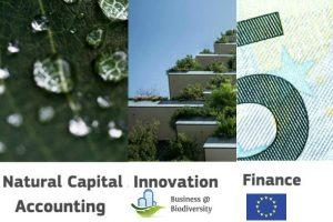 Segunda reunión anual Grupo Asesor de Business @ Biodiversity