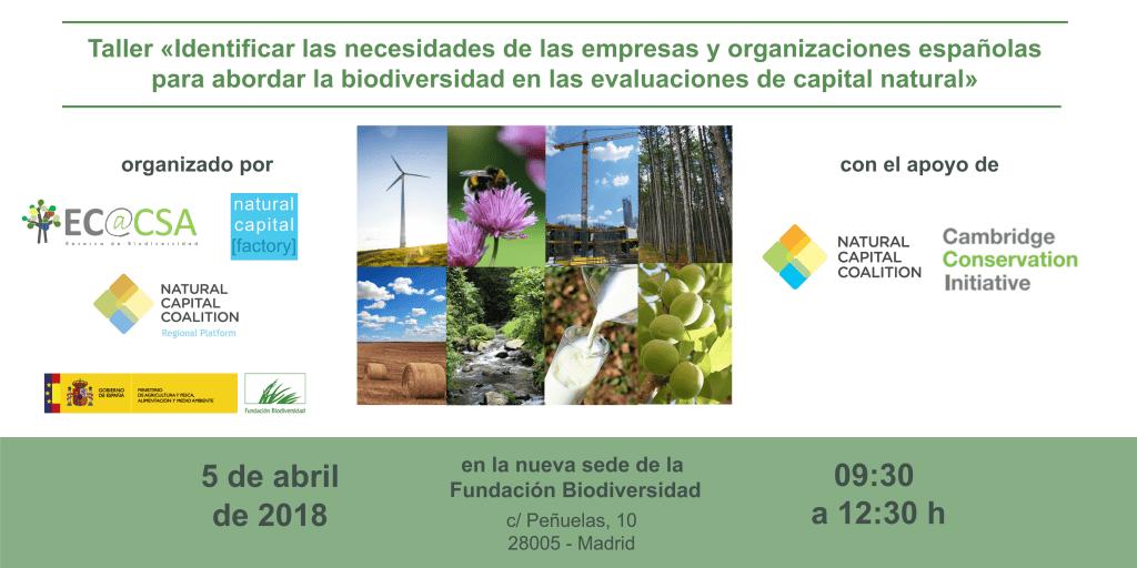 «Identificar las necesidades de las empresas españolas para abordar la biodiversidad en las evaluaciones de capital natural»