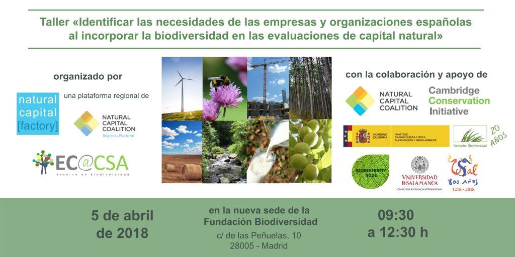 Taller «Identificar las necesidades de las empresas y organizaciones españolas al incorporar la biodiversidad en las evaluaciones de capital natural»