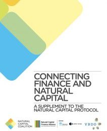 Connecting finance and natural capital: A supplement to the Natural Capital Protocol