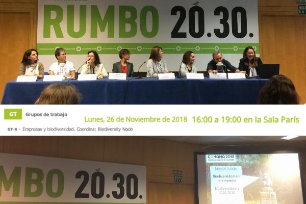 Taller de «Empresa, biodiversidad y ODS» en Conama 2018.