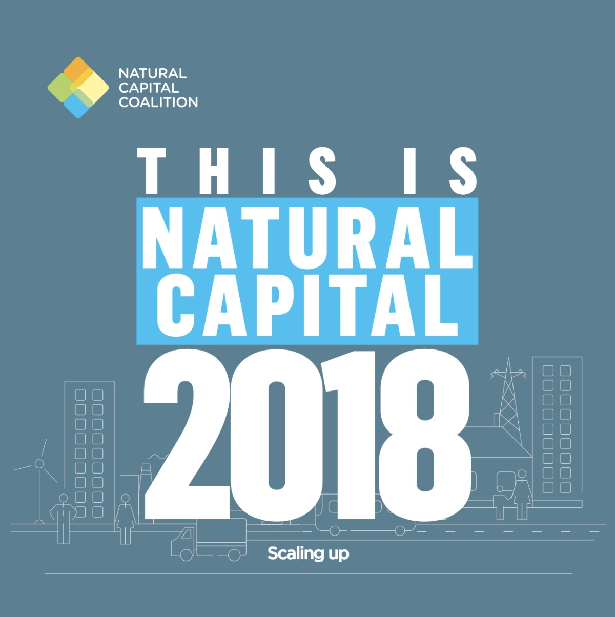 Esto es capital natural 2018