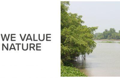 We Value Nature