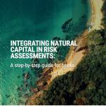 Integración capital natural en la evaluación de riesgos