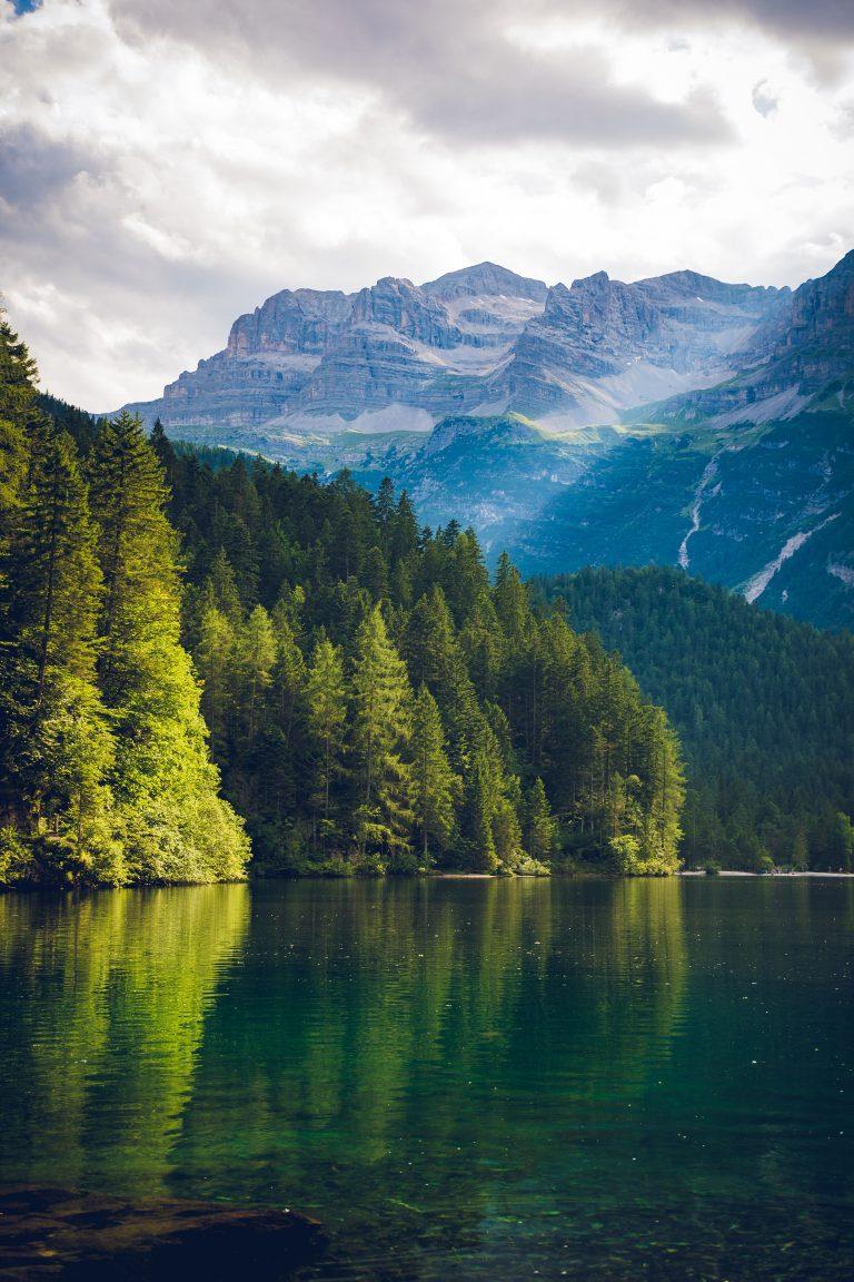 El CE incide en la relevancia de que los flujos financieros sean compatibles con el marco mundial de la biodiversidad pos2020
