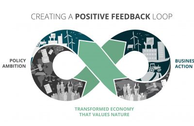 positive feedback loop Business for Nature COP25 climate change
