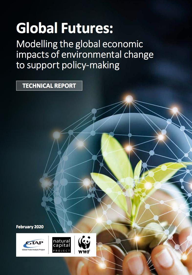 Modelando los impactos económicos globales del cambio ambiental para apoyar la formulación de políticas
