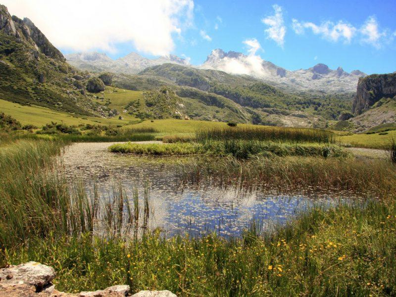 Montaña_charca